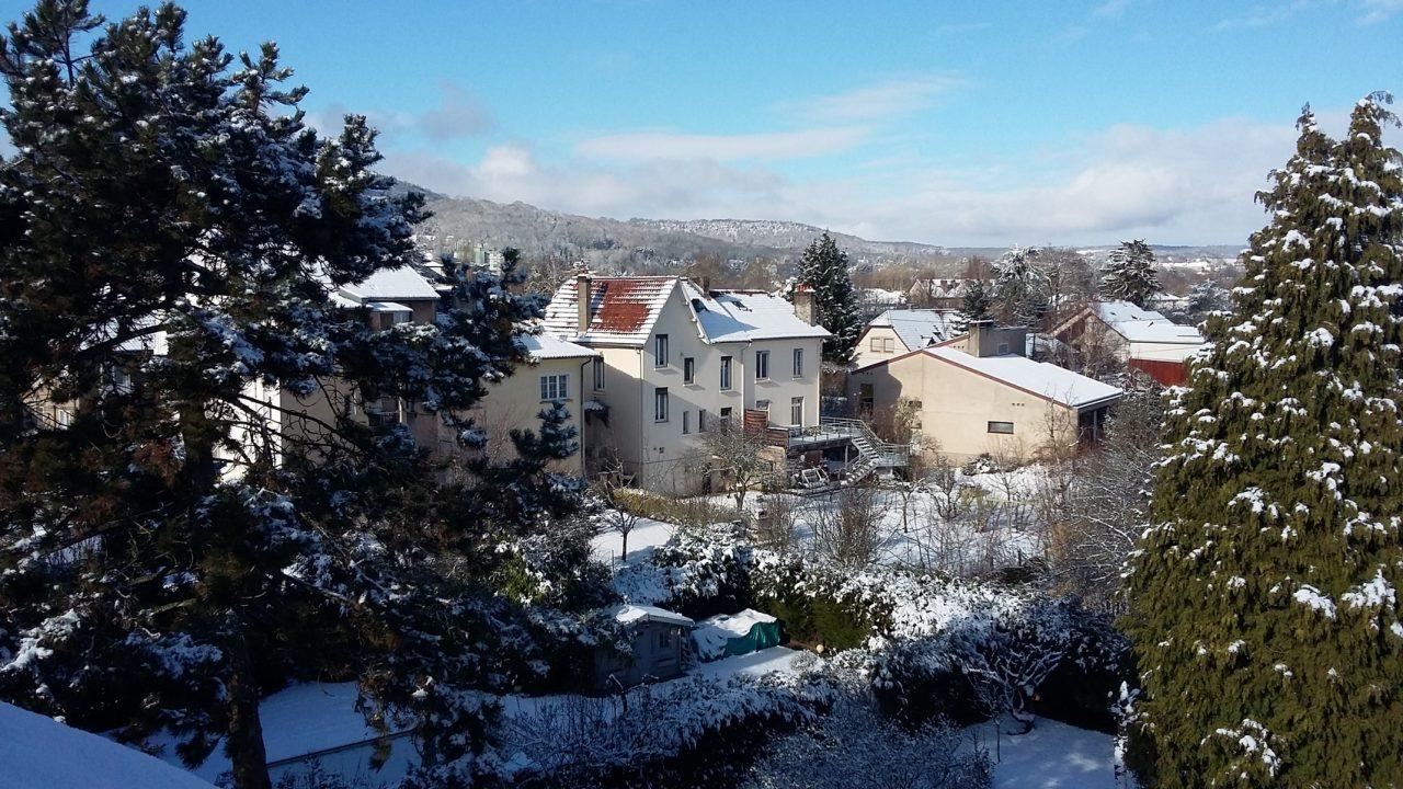 Les jardins sous la neige depuis la fenêtre